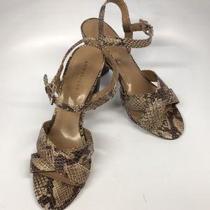 NWOT Ann Taylor Dress Shoes